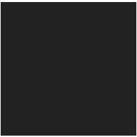 Global Repair Network Icon